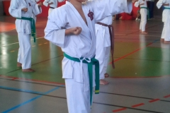 karate_stage_20183