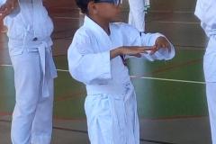 karate_stage_20184
