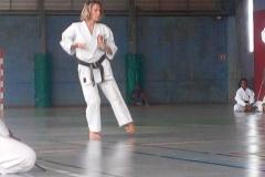 karate_stage_201845