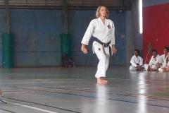 karate_stage_201858