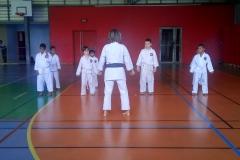 karate_stage_20187