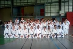 karate_stage_201878