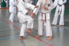 karate_stage_20189